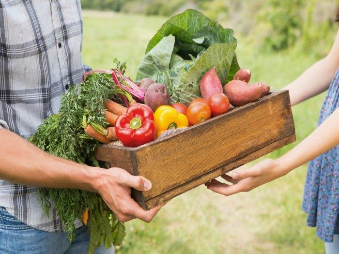 Exportación de alimentos orgánicos