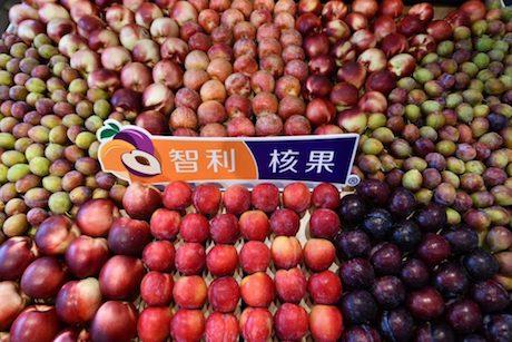 El éxito de la fruta chilena que arrasa en China