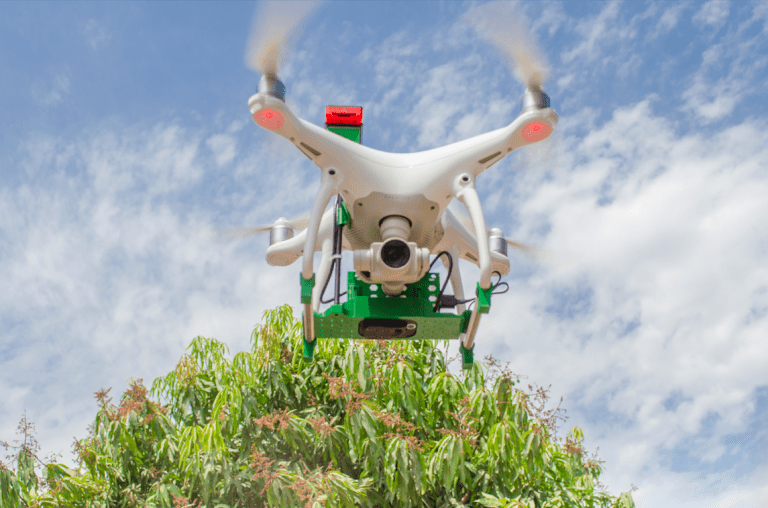 Con drones la fruta también se fortalece