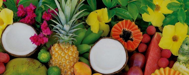 Industria Pulpa de fruta tropical y concentrado 2019; el crecimiento del mercado global