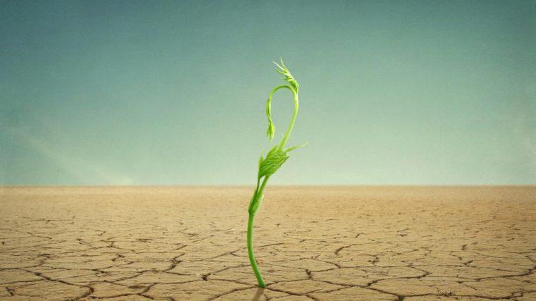 """""""Súmate"""" la campaña que apuesta por la resiliencia al cambio climático"""
