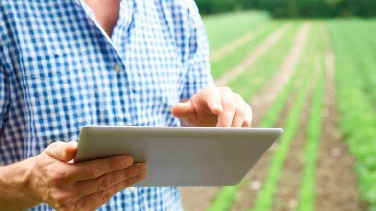 Fruticultura online; los beneficios de la era digital