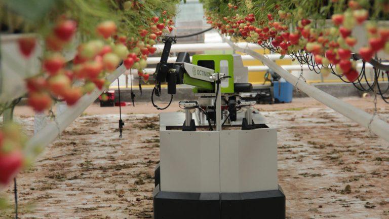 AgroTech Maule y la buena conexión con el desarrollo tecnológico