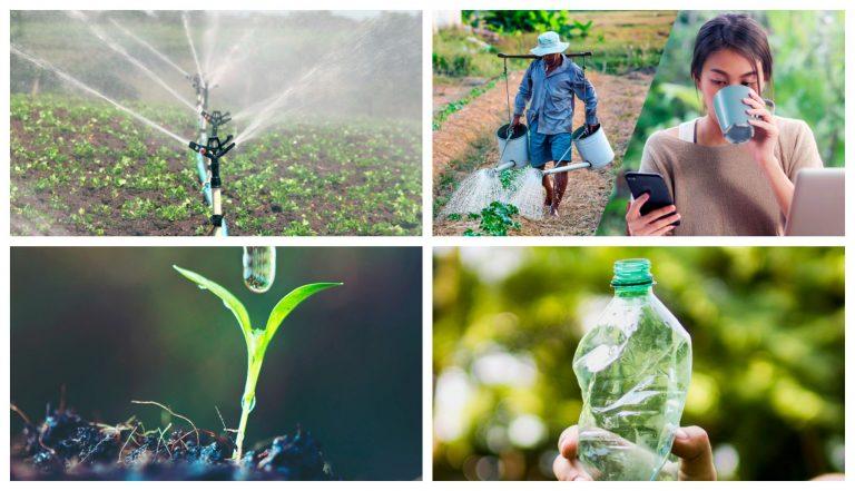 El valor del agua y la importancia del riego al 2020