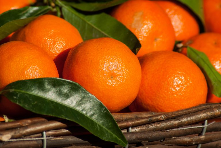 Fruta fresca registra fuerte alza en exportaciones