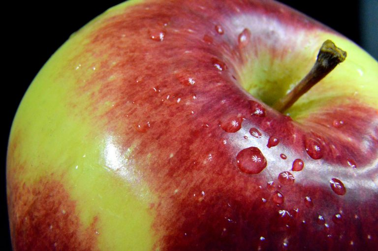 Visión y escenarios del mercado global de fibra de fruta al 2030