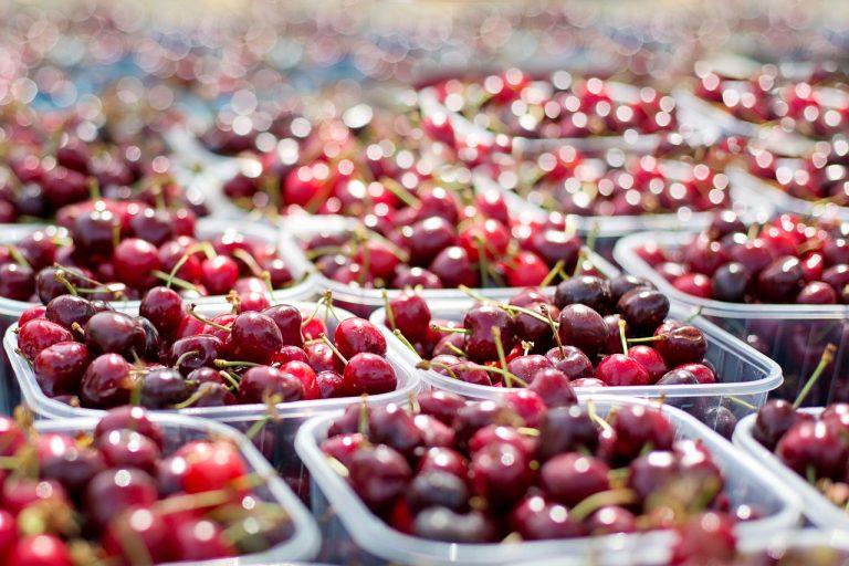 Exportaciones de fruta fresca aumentó 8,96%
