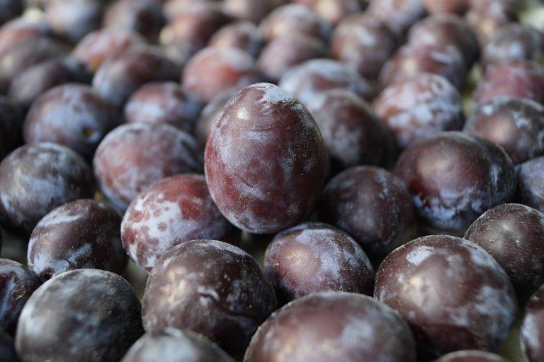 Golpe bajo a la industria frutícola chilena