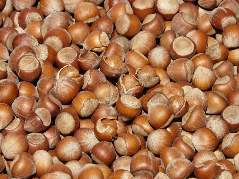 Aumentó 90% la exportación de frutos secos