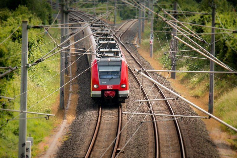 Tren refrigerado transporta fruta fresca para exportación