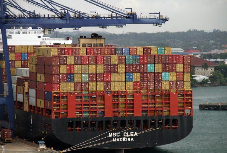 Baja de un 1% registró exportación de fruta chilena